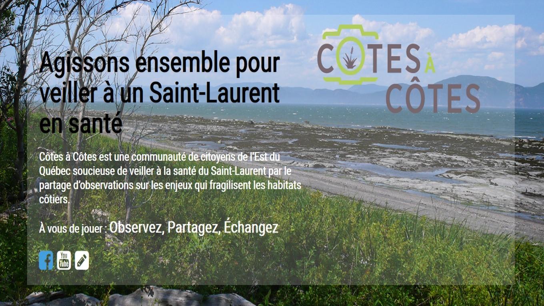 cotes_a_cotes_image (Auteur : Comité ZIP du Sud-de-l'Estuaire)